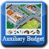 Auxiliary Budget